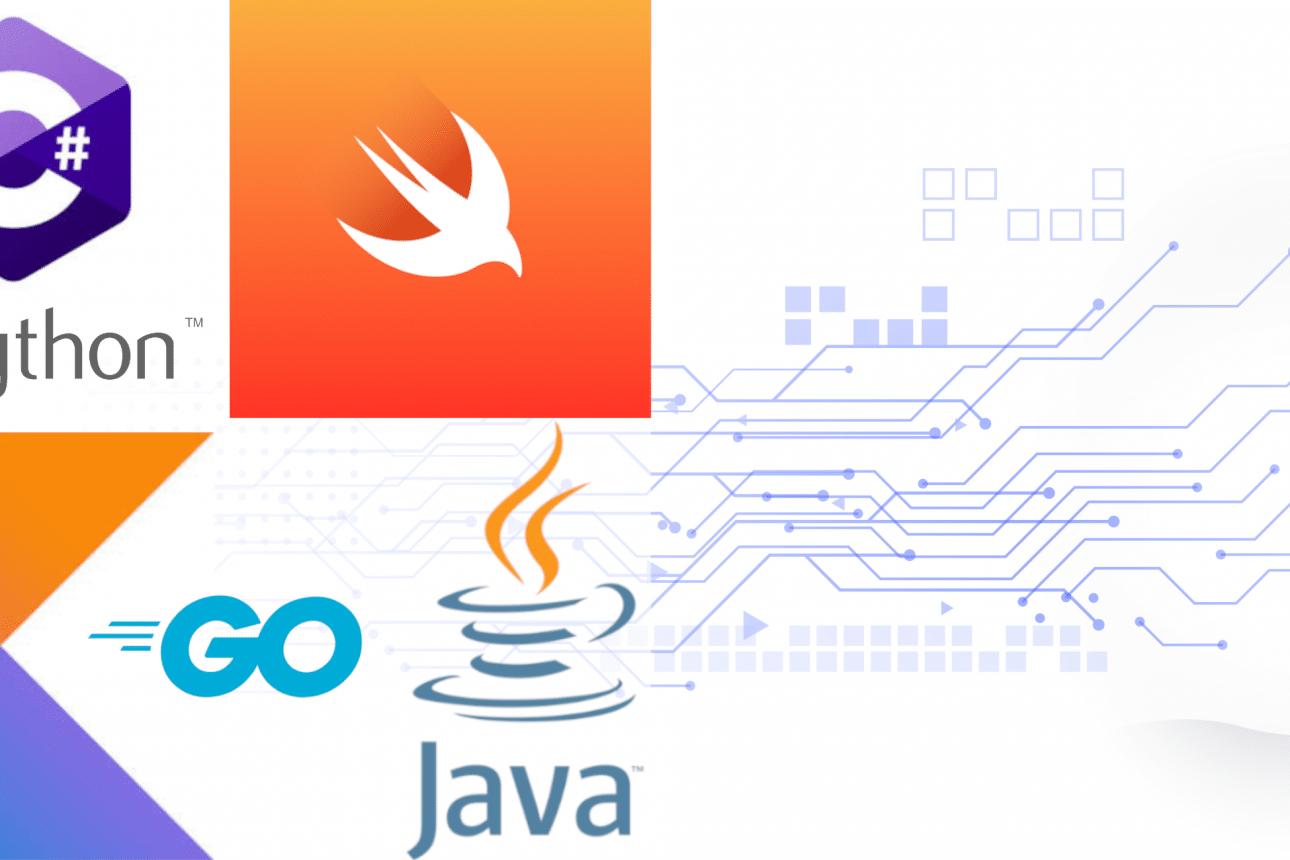 Кои езици за програмиране да учим през 2021?